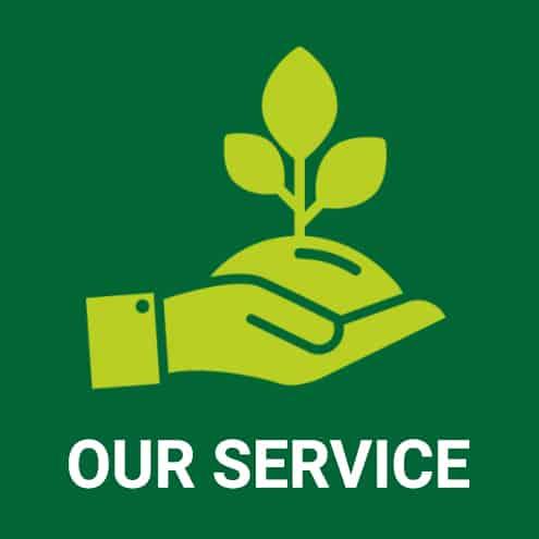 icon-nursery-services-vivai-porcellato