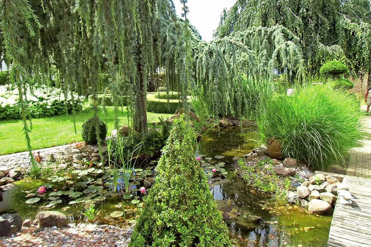 progettazione-realizzazione-parchi-giardini-vivai-porcellato-srl-loria-pistoia-11